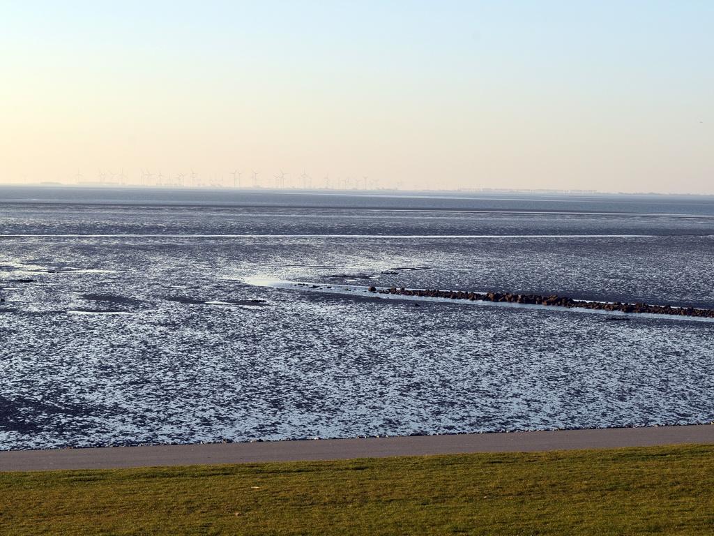 Nordseewatt bei Büsum